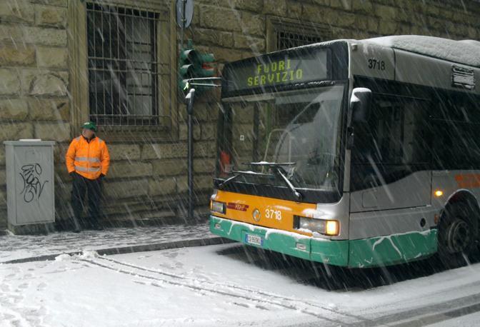 I bus si fermano e gli autisti aspettano (Federica)