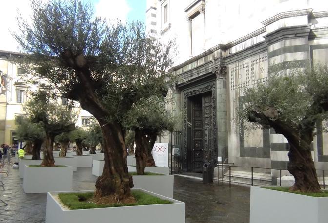 Il giardino degli ulivi al duomo corrierefiorentino - Giardino con ulivi ...