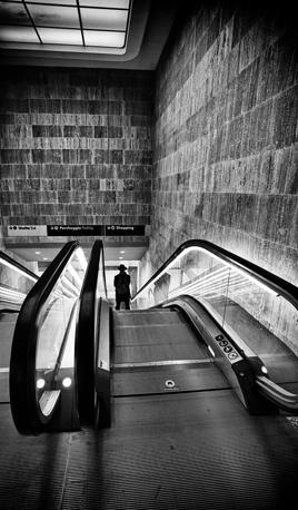 Fiorentini in bianco e nero corrierefiorentino for Sedia elettrica che sale le scale