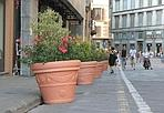 I fiori di via Tornabuoni - Dopo la pedonalizzazione, arrivano i primi arredi in via Tornabuoni