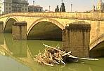 Un tronco tira l'altro - Capita molto spesso che i tronchi rimangano bloccati accanto ai piloni dei ponti, in particolare dopo le piene. Certo è che questa volta, su Ponte Santa Trinita, un tronco ha trattenuto l'altro e così i detriti sono diventati veramente tanto evidenti (Foto di M. Bonciani)
