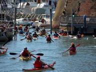 Nelle acque di Livorno... in kayak