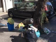 Viareggio, la guerra (fotografica) dei rifiuti