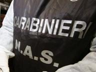 Firenze, medico sospeso continua a visitare i pazienti: arrestato
