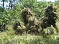 Grassina, cadavere in un terreno