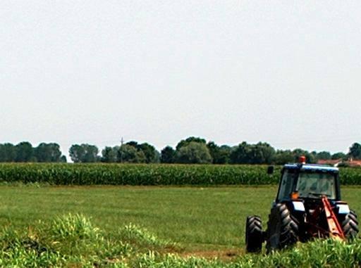 Imu agricola provincia per provincia ecco dove si paga in for Dove si paga f24