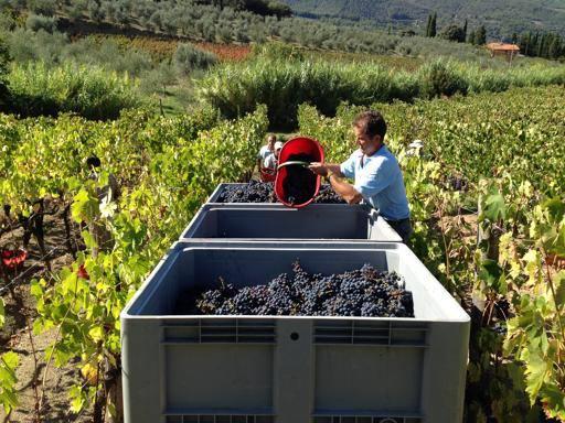 Trecento anni di Chianti, cos cambiato, insieme al vino