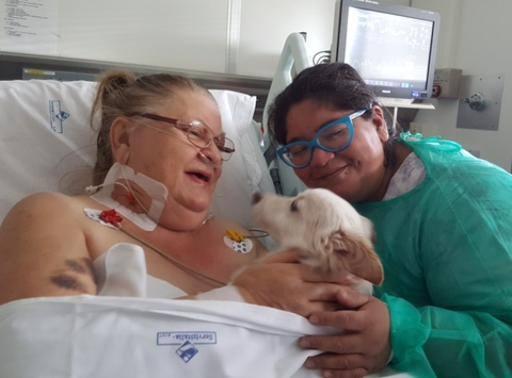 Luciana e Conan di nuovo insieme La pet therapy in terapia intensiva